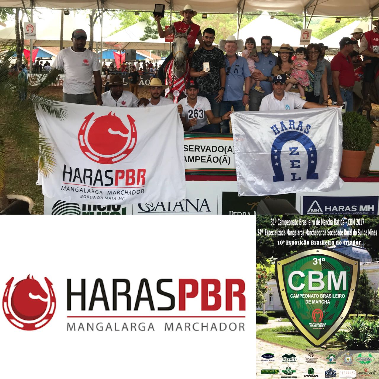 31ª CBM MARCHA BATIDA & XXXIV ESPEC. DO MM DA SOC.RURAL DO SUL DE MINAS - CAXAMBU ,MG